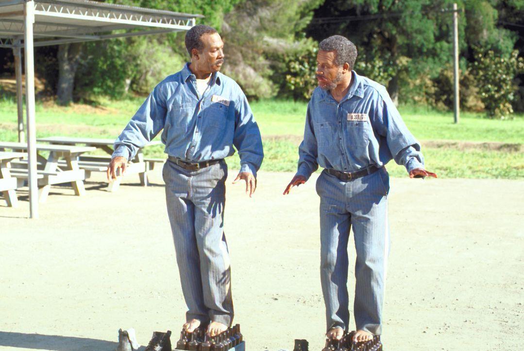 Als ein ungleiches Duo (Eddie Murphy, l. und Martin Lawrence, r.) ihren Coup vermasseln, werden sie unschuldig des Mordes verurteilt. 60 Jahre träum... - Bildquelle: 1999 Universal Studios. All rights reserved