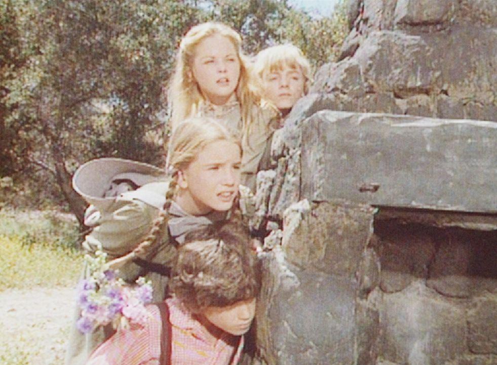 (v.l.n.r.) Vorsichtig nähern sich Willie (Jonathan Gilbert), Laura (Melissa Gilbert), Mary (Melissa Sue Anderson) und Nellie (Alison Arngrim) der R... - Bildquelle: Worldvision