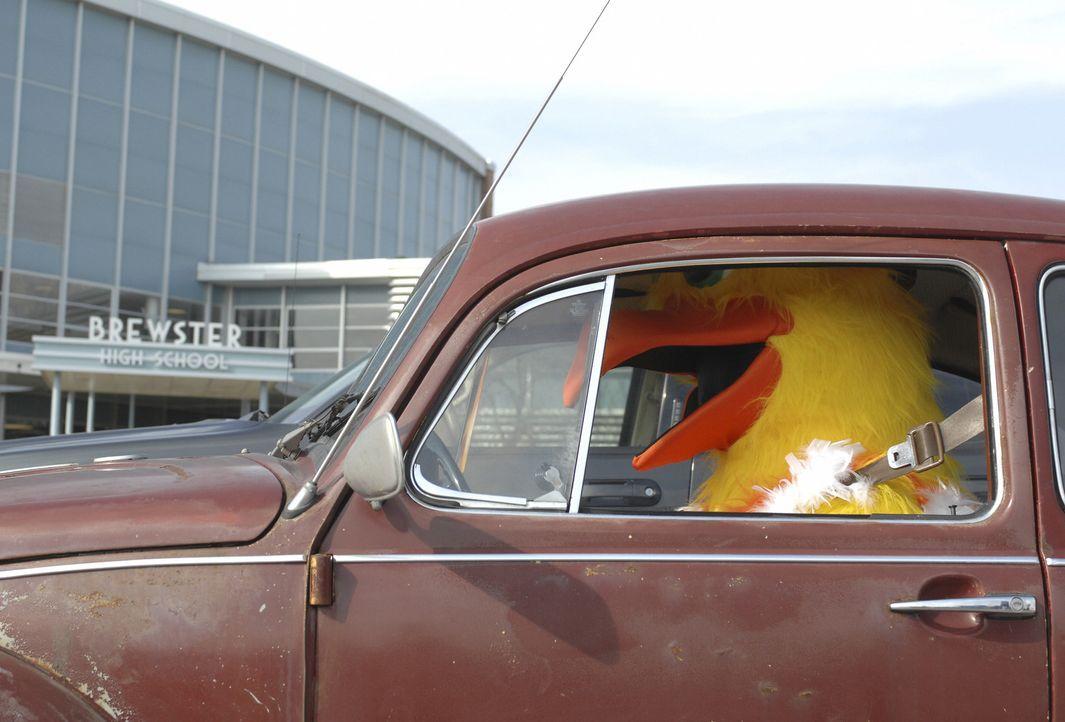 Der ganze Ort rätselt, wer wohl in dem Gockel-Kostüm stecken könnte ... - Bildquelle: Disney Enterprises, Inc. All rights reserved.
