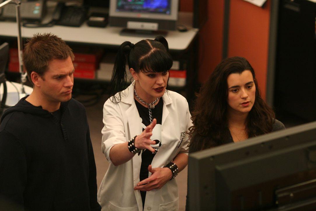 Als in einer Kühlbox ein Kopf eines Navy Captains gefunden wurde, beginnt für Abby (Pauley Perrette, M.), DiNozzo (Michael Weatherly, l.) und Ziva (... - Bildquelle: CBS Television