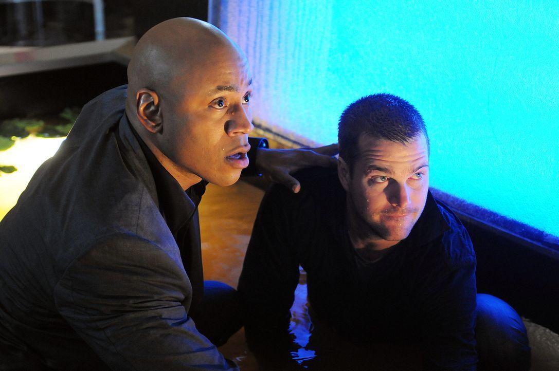 Dom ist nach wie vor verschwunden und es fällt allen schwer, sich mit  dieser Realität abzufinden: Callen (Chris O'Donnell, r.) und Sam (LL Cool J,... - Bildquelle: CBS Studios Inc. All Rights Reserved.