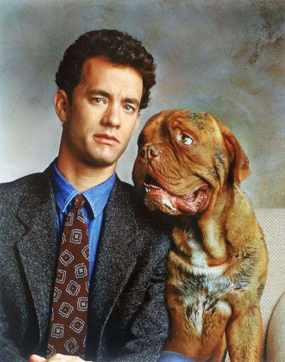 Scott Turner (Tom Hanks) ist beruflich Detective und privat ein Ordnungsfanatiker. Als eines Nachts der greise Sonderling Amos ermordet wird, muss d... - Bildquelle: Touchstone Pictures
