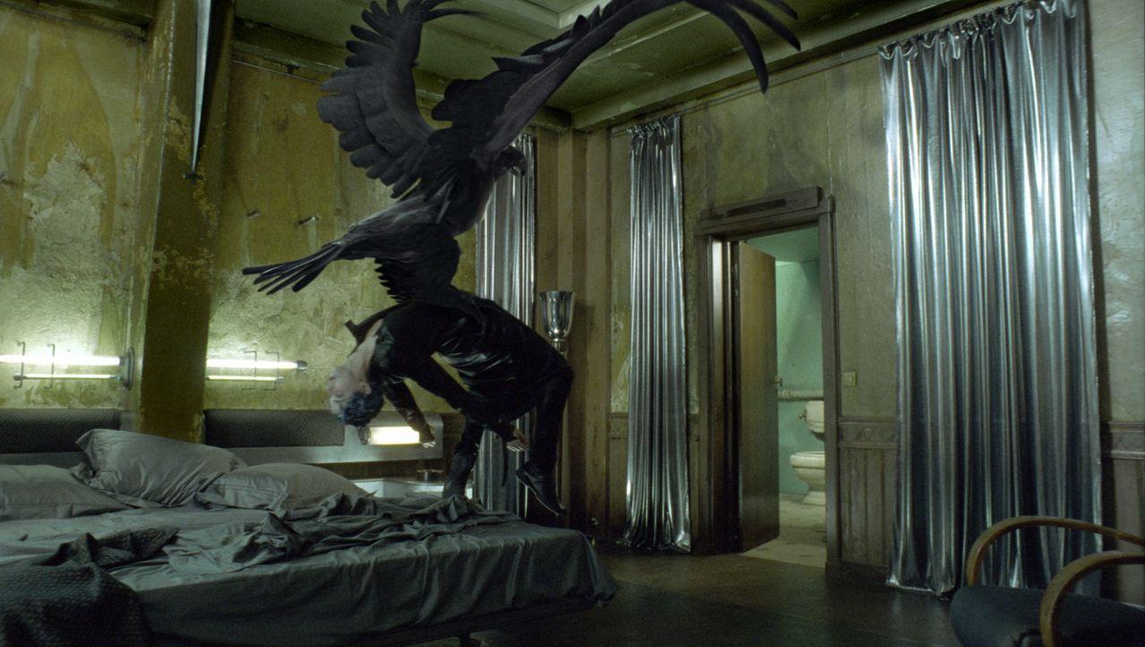 Horus, der falkenköpfige Gott, muss innerhalb von sieben Tagen einen menschlichen, männlichen Körper für den Fortpflanzungsversuch finden, um die Mu... - Bildquelle: TF1 Films Productions