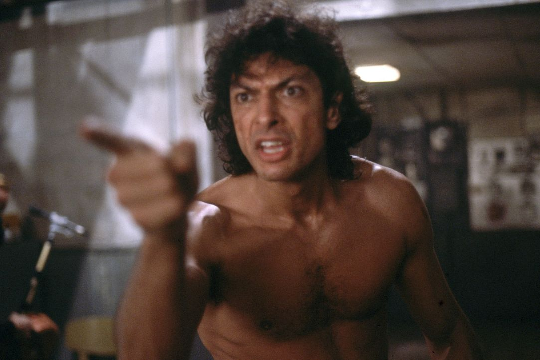 Seth Brundle (Jeff Goldblum) - Bildquelle: 1986 Twentieth Century Fox Film Corporation.  All rights reserved.