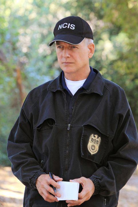 Ermittelt mit seinem Team in einem neuen Mordfall: Gibbs (Mark Harmon) ... - Bildquelle: CBS Television