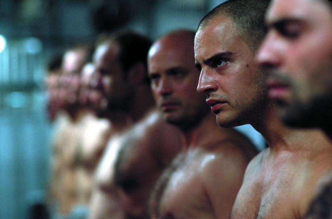 Immer wieder provoziert Tarek (Moritz Bleibtreu, 2.v.r.) die Wärter. Als sein Zellennachbar Steinhoff (Christian Berkel, 3.v.r.) ihn vor den Konseq... - Bildquelle: SENATOR FILM Alle Rechte vorbehalten