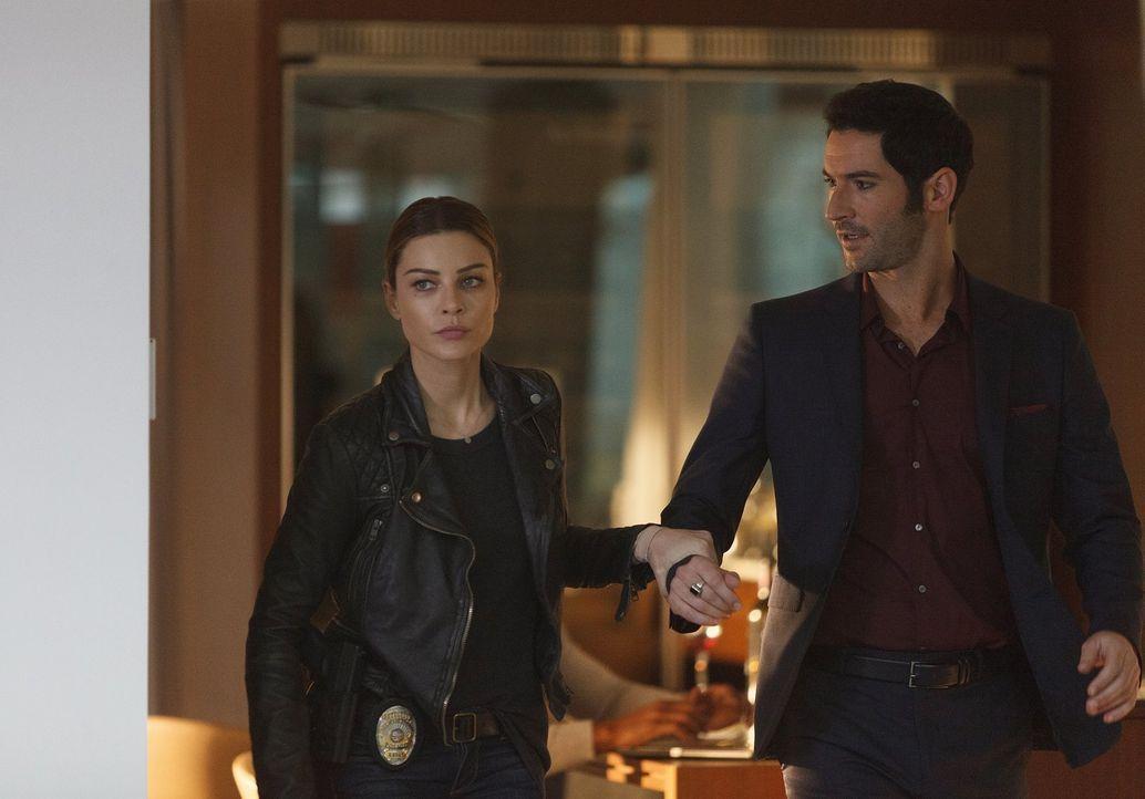 Chloe (Lauren German, l.) verliert beinahe die Geduld, als sich Lucifer (Tom Ellis, r.) in den neusten Fall einmischt, bei dem er sogar selber ein T... - Bildquelle: 2016 Warner Brothers