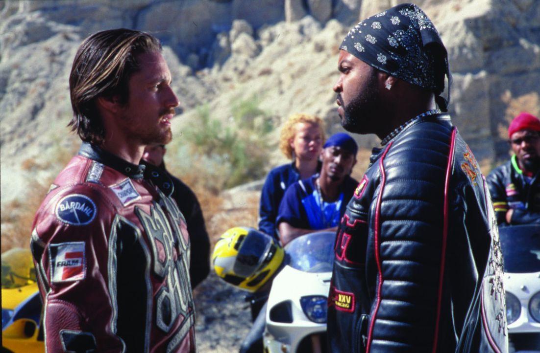 Cary Ford (Martin Henderson, l.) wird beschuldigt der Mörder von Treys Bruder Junior zu sein. Der Motorradgang-Führer Trey (Ice Cube, r.), schwör... - Bildquelle: Warner Bros. Pictures