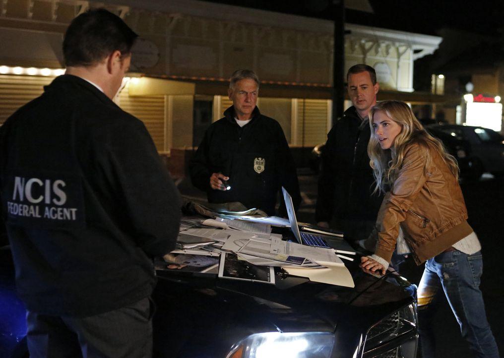 """Ermitteln zusammen in einen neuen Fall: NSA-Analystin Eleanor """"Ellie"""" Bishop (Emily Wickersham, r.), Gibbs (Mark Harmon, 2.v.l.), McGee (Sean Murray... - Bildquelle: CBS Television"""