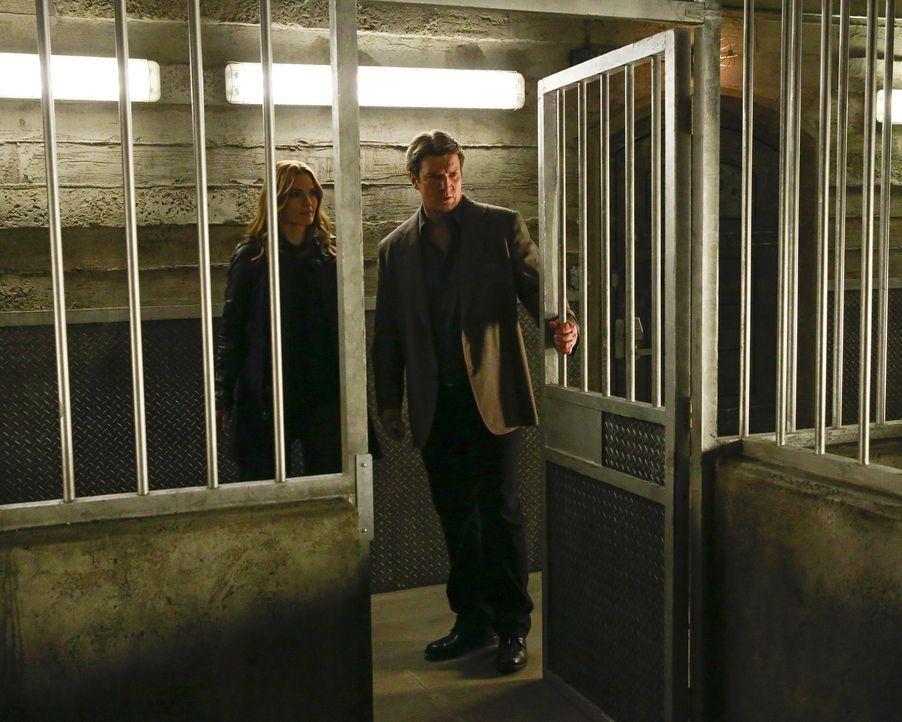Bei ihrem neusten Fall stoßen Beckett (Stana Katic, l.) und Castle (Nathan Fillion, r.) auf perfide Vorfälle, die sie an das Stanford-Prison-Experim... - Bildquelle: Mitchell Haaseth 2015 American Broadcasting Companies, Inc. All rights reserved.
