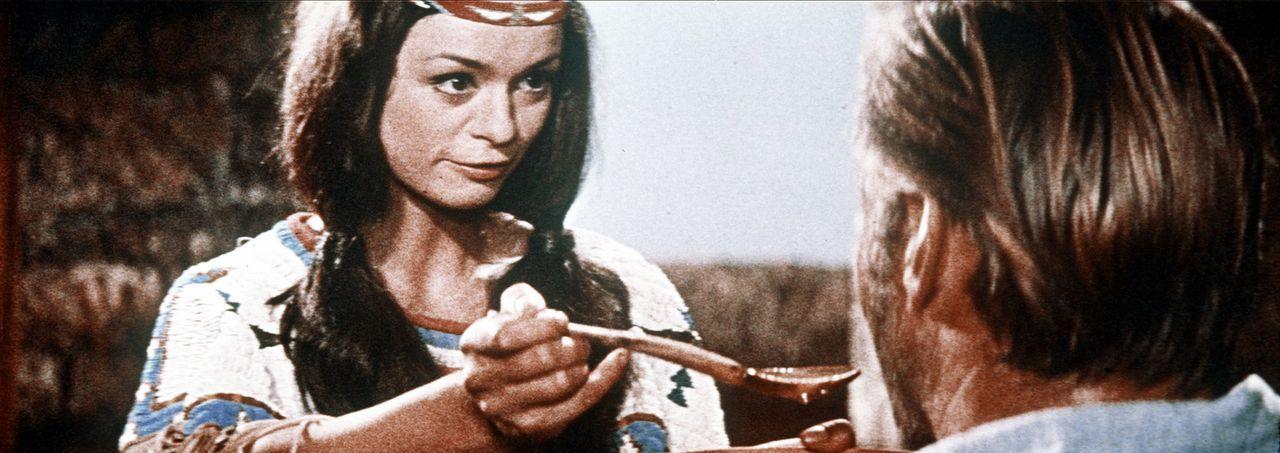 Nach einem erneuten Angriff der Apachen wird Old Shatterhand (Lex Barker, r.) von diesen überwältigt und verletzt. Die Schwester des Häuptlings W... - Bildquelle: Columbia Pictures
