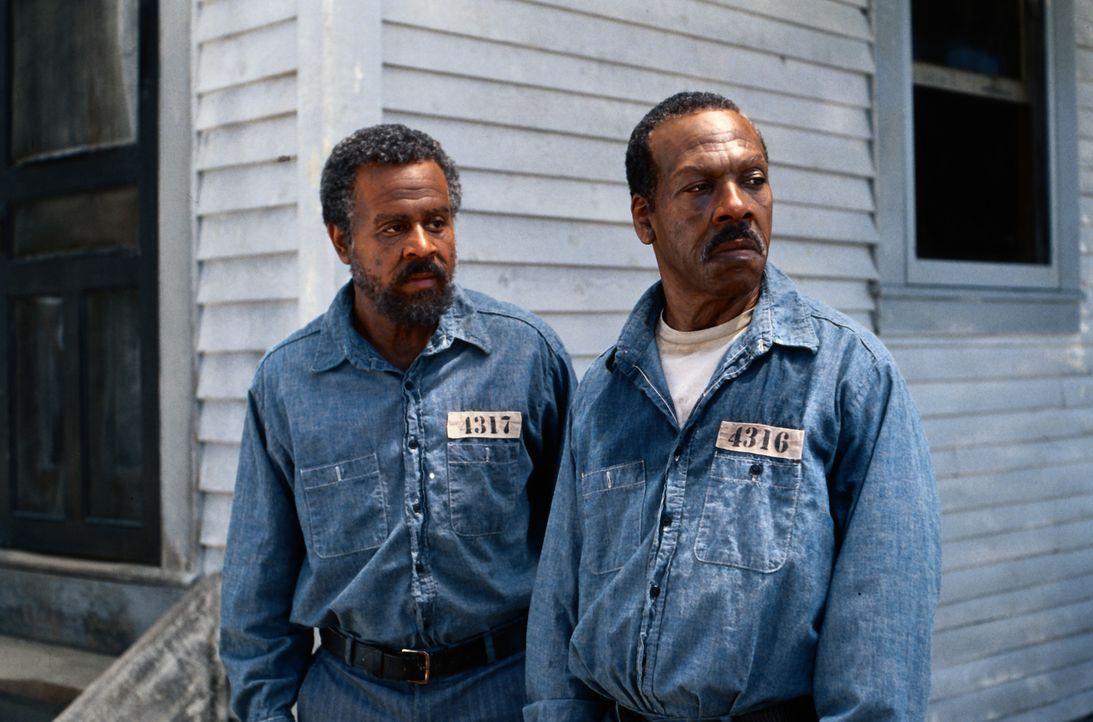 Claude (Martin Lawrence, l.) und Ray (Eddie Murphy, r.) werden wegen Mordes verhaftet, der ihnen vom örtlichen Sheriff angehängt wurde - und zu lebe... - Bildquelle: 1999 Universal Studios. All rights reserved