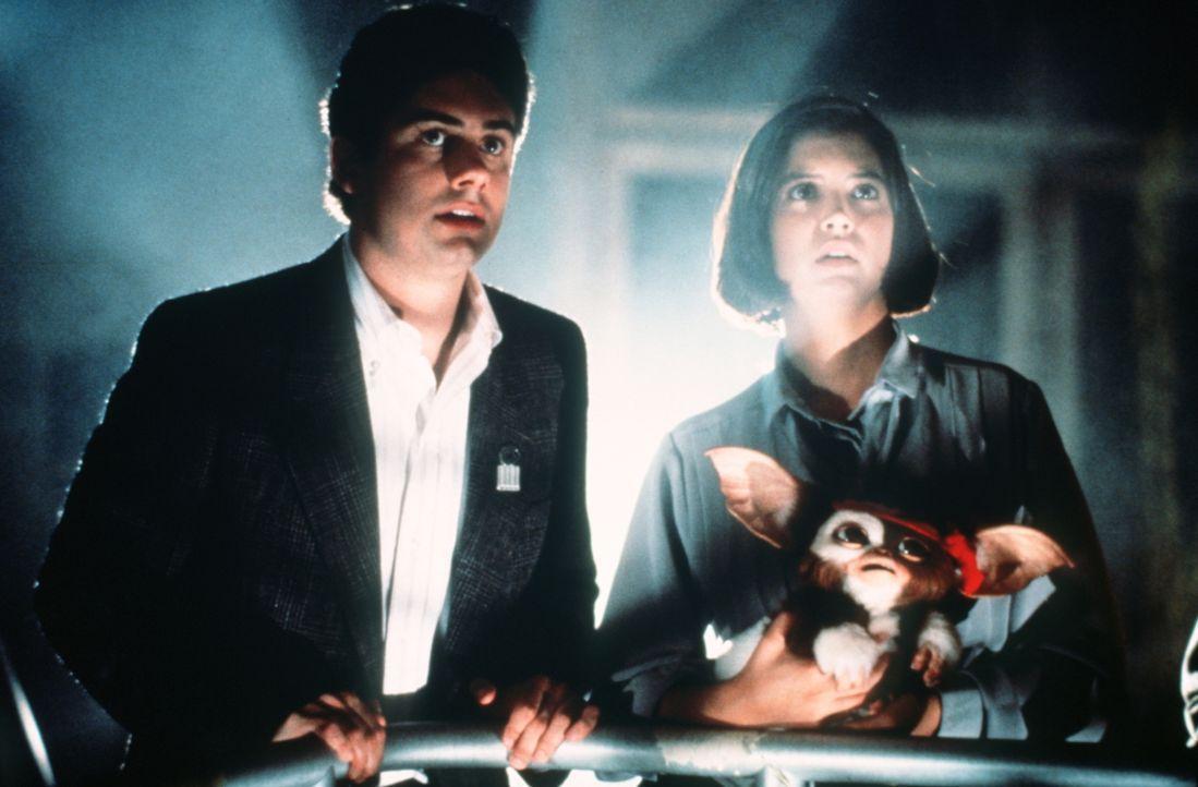 Den Gremlins gelingt es, fast den gesamten Wolkenkratzer in ihre Gewalt zu bringen. Wenn sie es jetzt noch schaffen, bei Nacht aus dem Hochhaus zu f... - Bildquelle: Warner Bros.