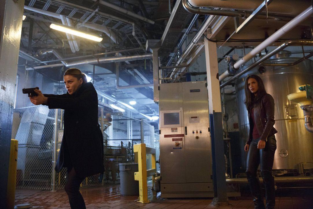 Als jemand versucht, ausgerechnet Lucifer einen Mord anzuhängen, suchen Chloe (Lauren German, l.) und Maze (Lesley-Ann Brandt, r.) nach dem wahren M... - Bildquelle: 2016 Warner Brothers