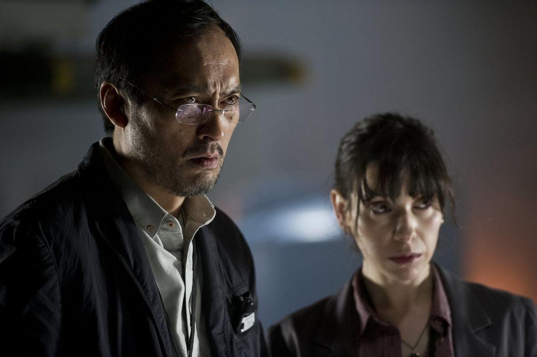 Dr. Ichiro Serizawa (Ken Watanabe, l.) und seine Assistentin Vivienne Graham (Sally Hawkins, r.) stehen vor einem Rätsel, als das urzeitliche Monste... - Bildquelle: 2014   Warner Bros.