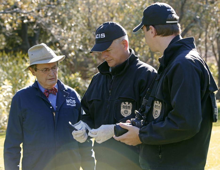 Erneut wird das Team um Dr. Donald Mallard (David McCallum, l.), Gibbs (Mark Harmon, M.) und Special Agent Timothy McGee (Sean Murray, r.) auf eine... - Bildquelle: CBS Television