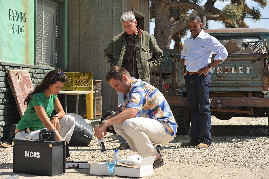 Nach alldem was geschehen ist, kommen Gibbs (Mark Harmon, hinten l.) und der neue NCIS Direktor Leon Vance (Rocky Carroll, hinten r.) nach LA, um Zi... - Bildquelle: CBS Television