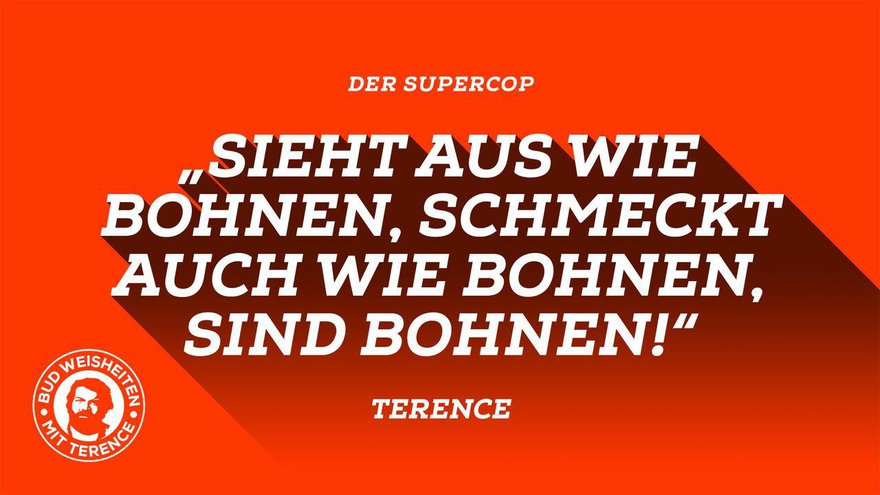 Bud-Weisheiten mit Terence 8