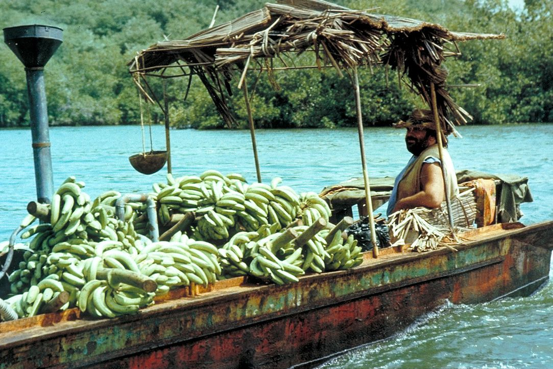 Bananenhändler Joe (Bud Spencer) besitzt weder Ausweispapiere noch eine gültige Handelslizenz. Als ihm eines Tages eine Mafia-Organisation den Ban...