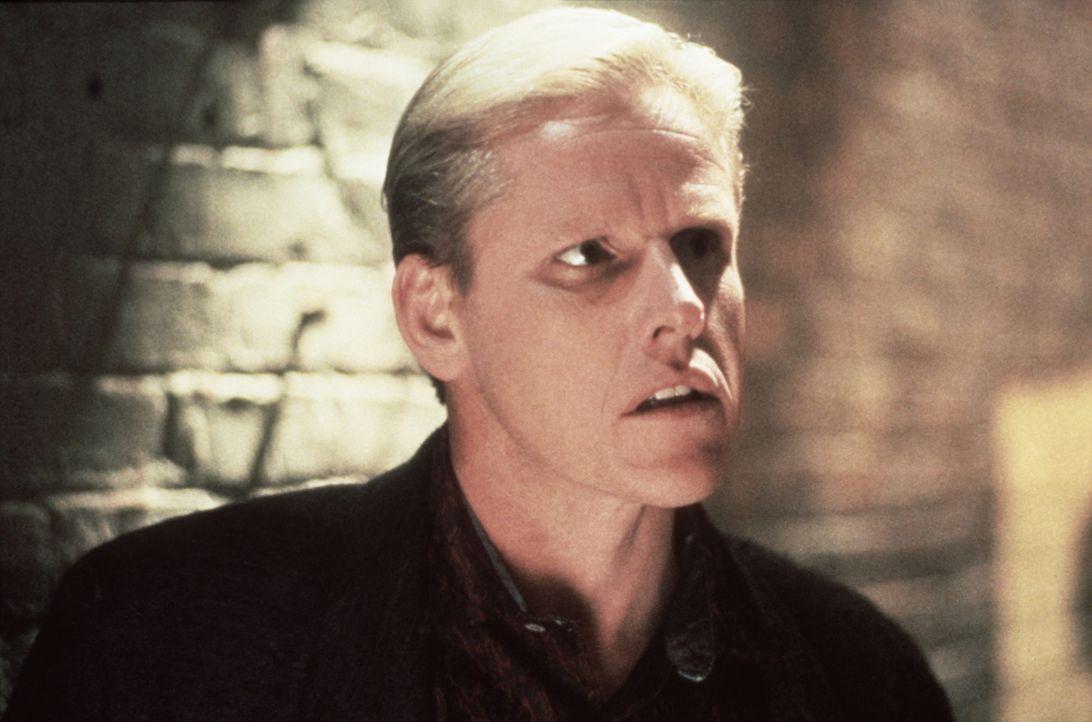 Mr. Joshua (Gary Busey) macht im großem Stil auf Heroin-Schmuggel ... - Bildquelle: Warner Bros.