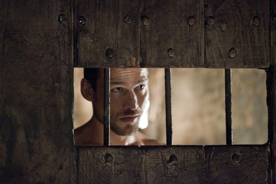 Ahnt noch nicht, dass er schon bald besondere Dienste leisten muss: Spartacus (Andy Whitfield) ... - Bildquelle: 2010 Starz Entertainment, LLC