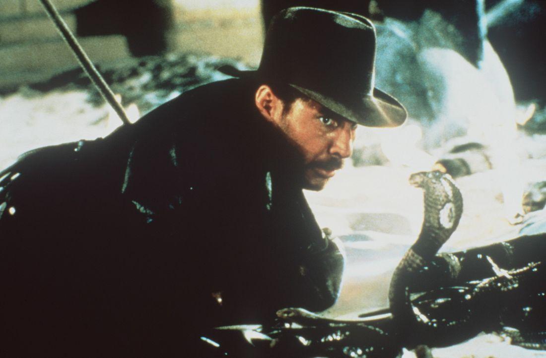 Indiana Jones (Harrison Ford) muss sich im alten Ägypten mit Tempelschlangen und ähnlichem herumschlagen ... - Bildquelle: Paramount Pictures