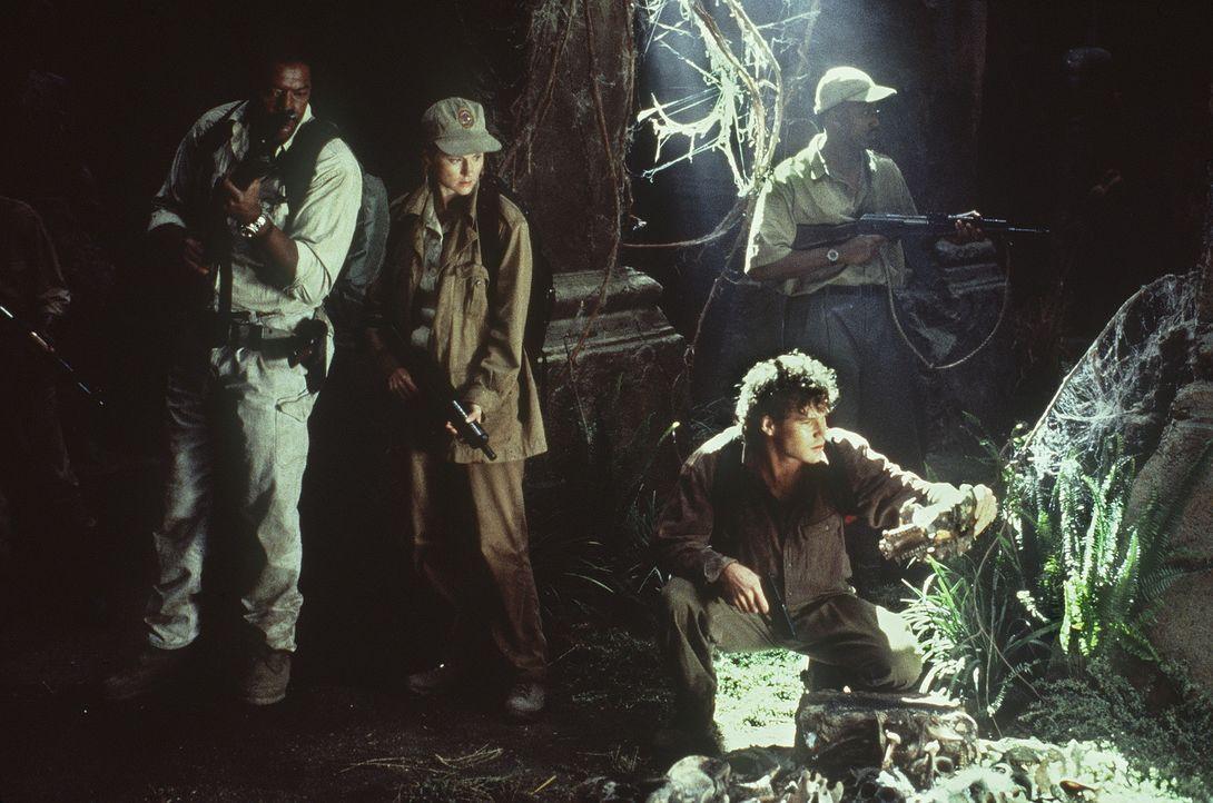 Monroe Kelly (Ernie Hudson, l.), Peter Elliot (Dylan Walsh, r.) und Karen Ross (Laura Linney, M.) haben die Ruinen der verlorenen Stadt erreicht. Do... - Bildquelle: Paramount Pictures