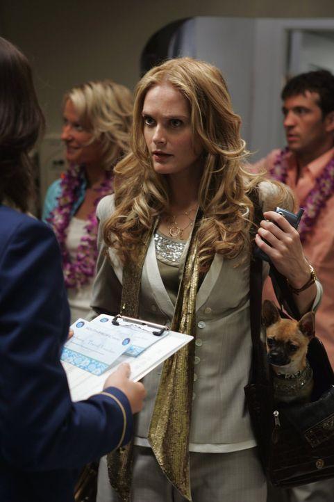 Auch die attraktive Mercedes (Rachel Blanchard) gehört zu den Flugpassagieren. Begleitet wird sie nur von ihrem Chihuahua-Hündchen ... - Bildquelle: Warner Brothers