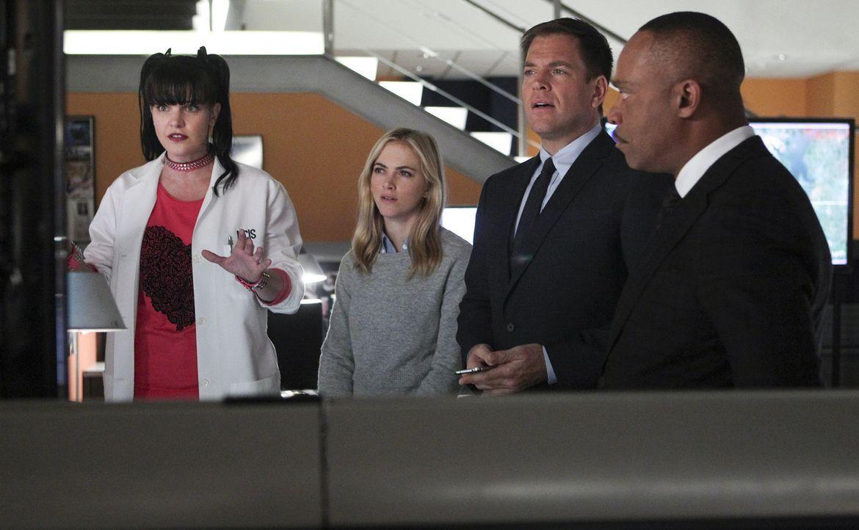 Ein neuer Fall wartet auf das Team: Abby (Pauley Perrette, l.), Ellie (Emily Wickersham, 2.v.l.), Anthony (Michael Weatherly, 2.v.r.) und Vance (Roc... - Bildquelle: CBS Television