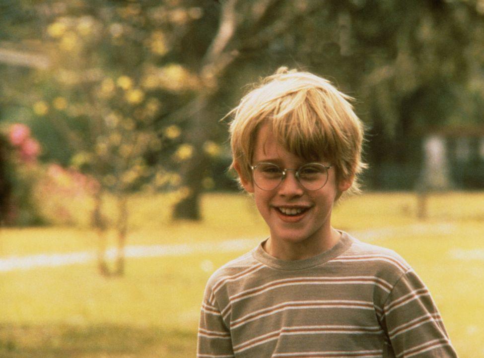 Erste Liebe: Thomas J. (Macaulay Culkin) ist von Vada sehr angetan ... - Bildquelle: Columbia Pictures