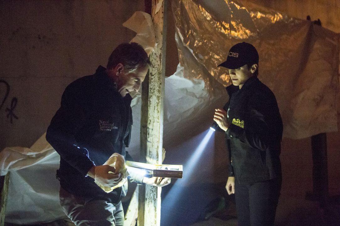 Ein neuer Fall, in dem ein Petty Officer in einem Stripclubs ermordet wurde, beschäftigt Pride (Scott Bakula, l.) und Brody (Zoe McLellan, r.) ... - Bildquelle: 2015 CBS Broadcasting, Inc. All Rights Reserved