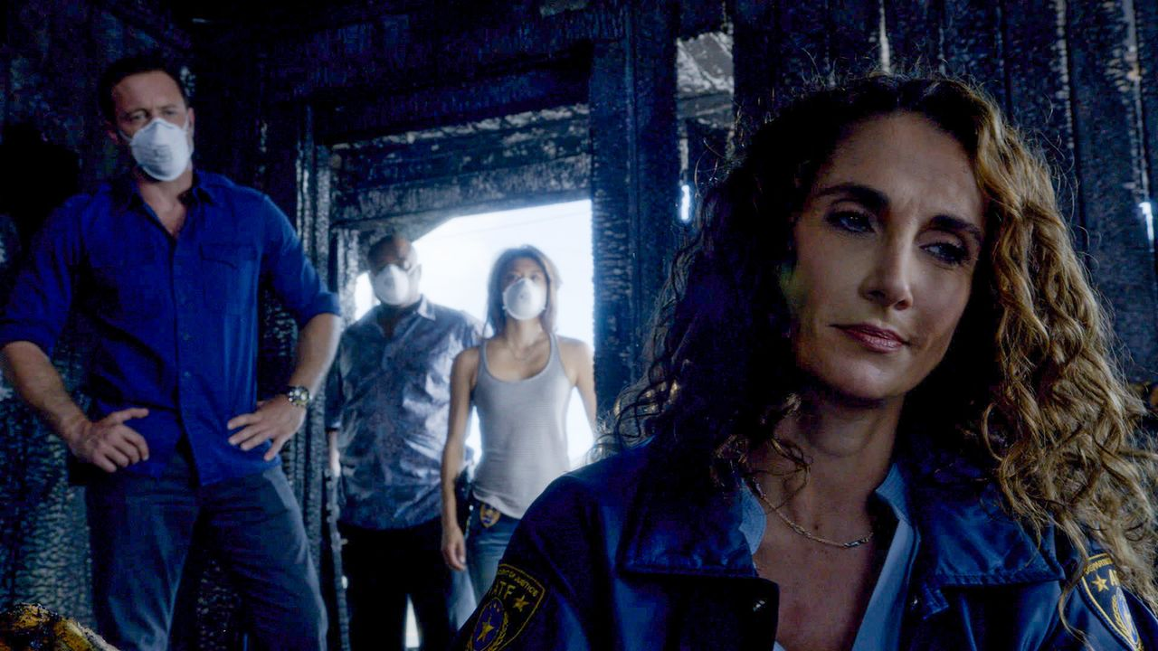 Steve (Alex O'Loughlin, l.), Grover (Chi McBride, 2.v.l.) und Kono (Grace Park, 2.v.r.) benötigen die Hilfe der kalifornischen Agentin Kathy Millwoo... - Bildquelle: 2014 CBS Broadcasting Inc. All Rights Reserved.