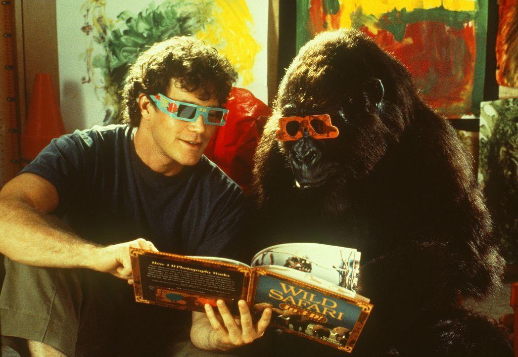 Primatologe Peter Elliot (Dylan Walsh) hat einen ungeheuer gelehrigen Schüler: die Gorilladame Amy. Eines Tages beschließt er, sie in ihre Heimat... - Bildquelle: Paramount Pictures