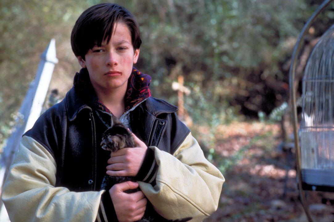 Nach dem Tod seiner Mutter zieht Geoff Matthews (Edward Furlong) mit seinem Vater in die Kleinstadt Ludlow. Er flüchtet immer wieder in die Erinneru... - Bildquelle: 2020 Paramount Pictures. All Rights Reserved.