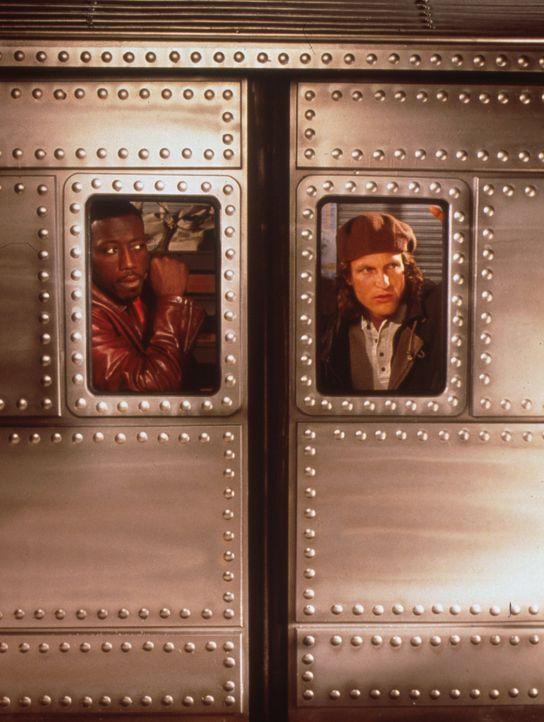 John (Wesley Snipes, l.) und Charlie (Woody Harrelson, r.) rasen mit dem führerlosen Geldzug durch die Tunnels der New Yorker U-Bahn ... - Bildquelle: Columbia Tristar