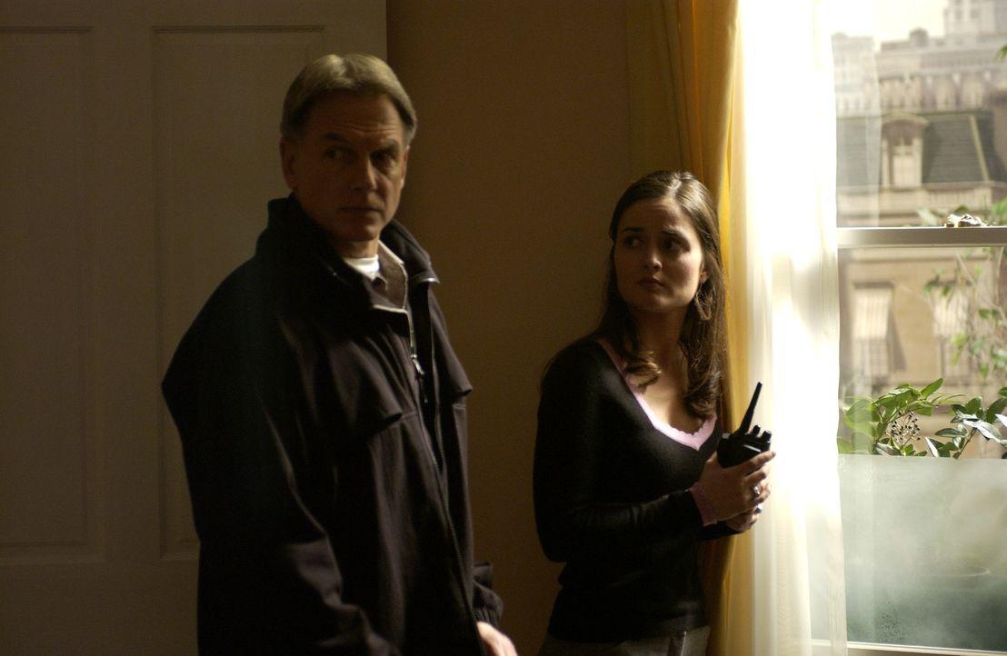 Gibbs (Mark Harmon, l.) spricht mit Erin (Danica McKellar, r.), die behauptet einen Mord beobachtet zu haben ... - Bildquelle: CBS Television