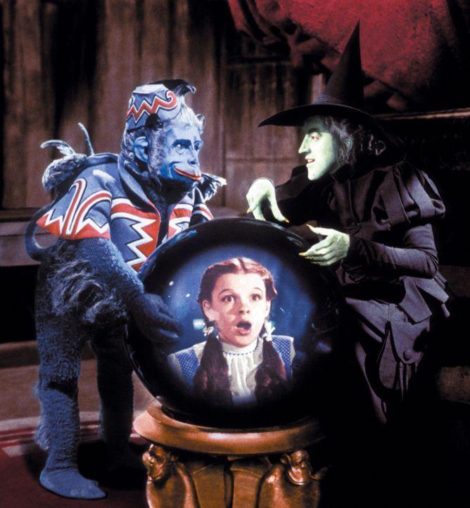 Die böse Hexe des Westens (Margaret Hamilton, r.) schickt ihren fliegenden Affen aus, Dorothy (Judy Garland, M.) einzufangen ... - Bildquelle: Warner Bros.