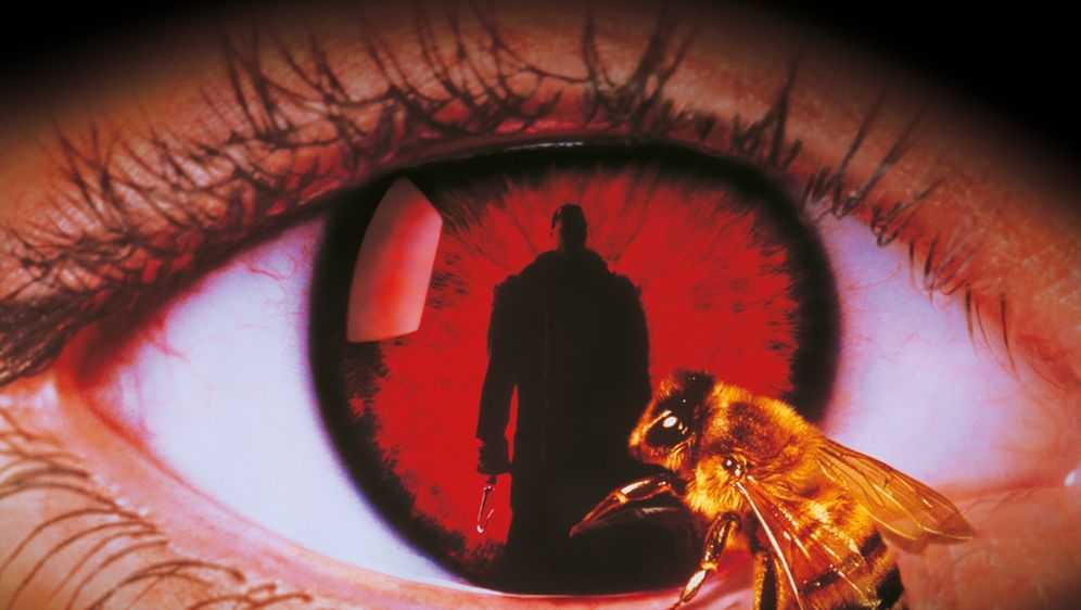 Candyman's Fluch - Bildquelle: 1992 CANDYMAN FILMS INC.  ALL RIGHTS RESERVED.