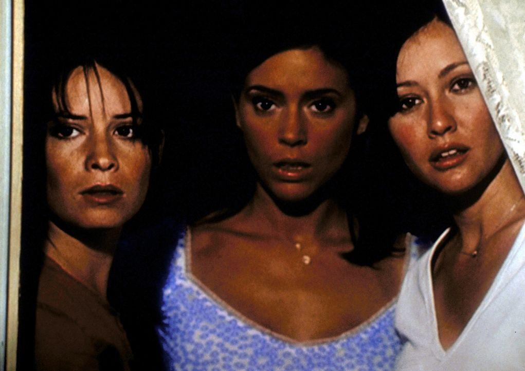Nachdem sie in die Zukunft gereist sind, sehen Piper (Holly Marie Combs, l.), Phoebe (Alyssa Milano, M.) und Prue (Shannen Doherty, r.) mit Erstaune... - Bildquelle: Paramount Pictures