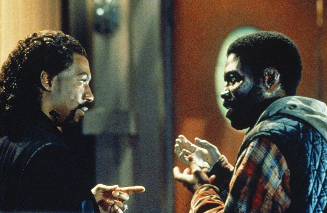 Auf der Suche nach der Vampirin geraten Maximillian (Eddie Murphy, l.) und Julius (Kadeem Hardison, r.) an ihre Grenzen ... - Bildquelle: Paramount Pictures