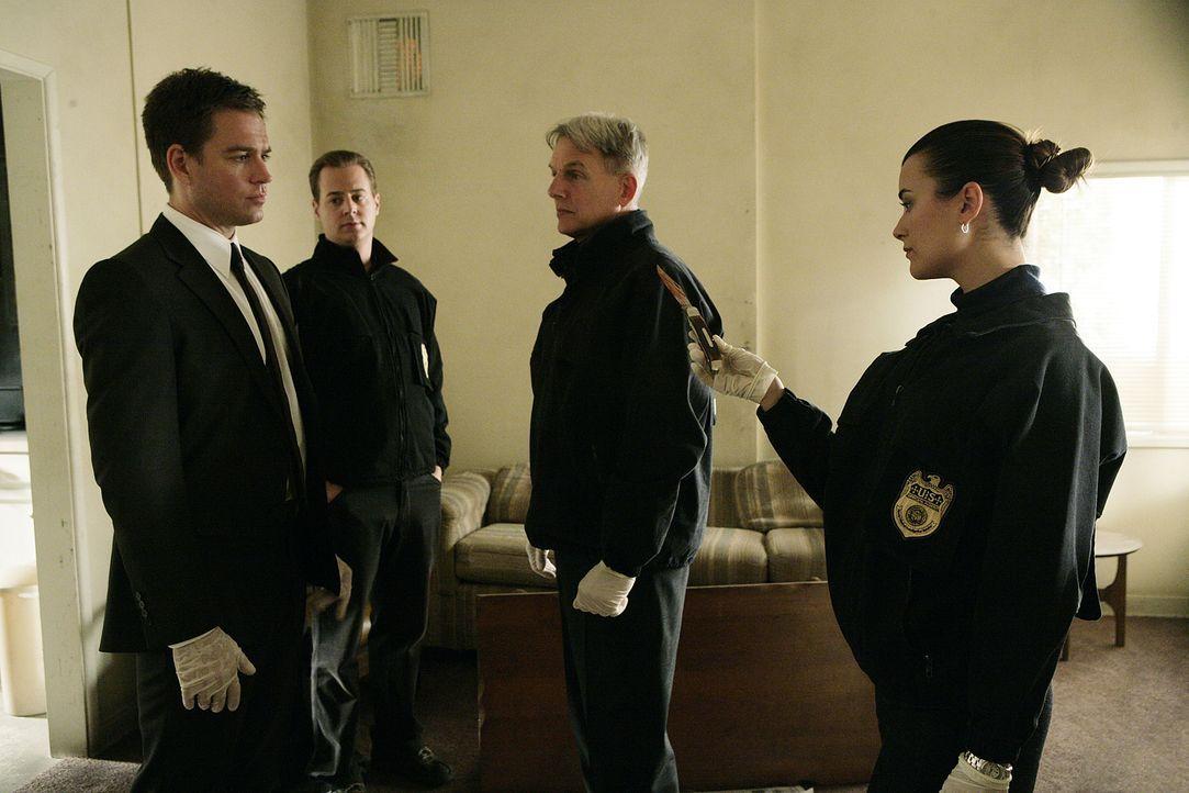 Gemeinsam ermitteln Tony (Michael Weatherly, l.), McGee (Sean Murray, 2.v.l.), Ziva (Cote de Pablo, r.) und Gibbs (Mark Harmon, 2.v.r.), um den Mörd... - Bildquelle: CBS Television