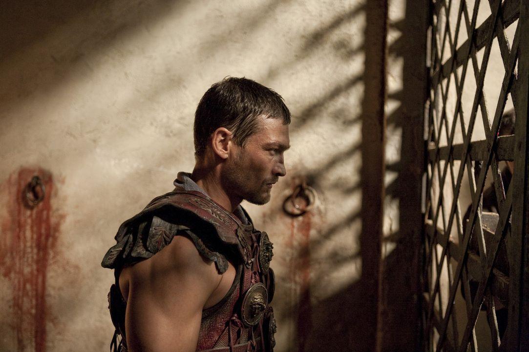 Ahnt nicht, dass  Batiatus etwas mit dem Tod von seiner geliebten Sura zu tun hat: Spartacus (Andy Whitfield) .. - Bildquelle: 2010 Starz Entertainment, LLC