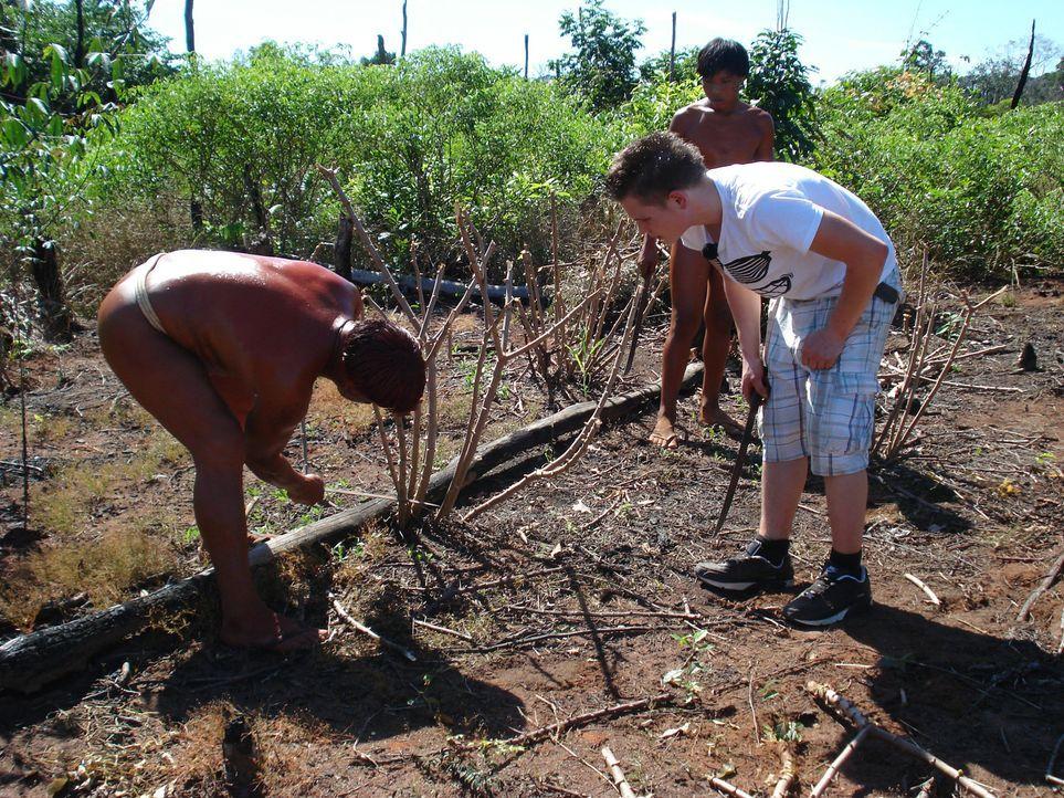 Bei den Waura-Indios im Xingu-Delta bekommt Florian (M.) die Chance, sein Leben zu verändern ... - Bildquelle: kabel eins