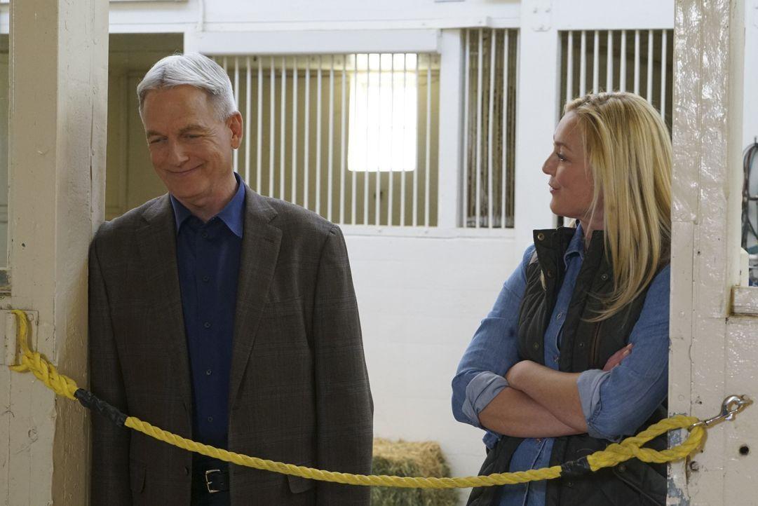 Special Agent Leroy Jethro Gibbs (Mark Harmon, l.) und Polizistin May Dawson (Elisabeth Röhm, r.) haben ein gemeinsames Ziel. Sie wollen der Verbrec... - Bildquelle: 2017 CBS Broadcasting, Inc. All Rights Reserved.
