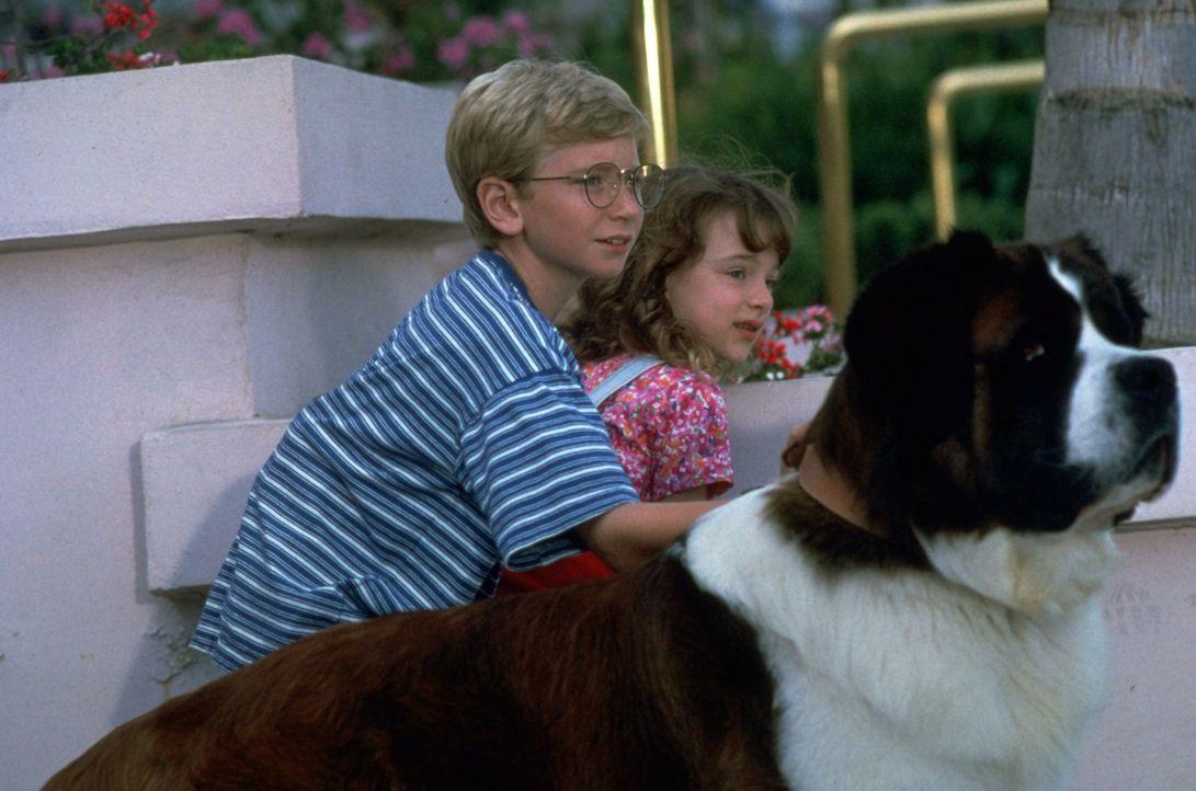 Weil die Newtons (Christopher Castile,l. und Sarah Rose Karr, r.) Beethoven vernachlässigen, haut der kluge Hund ab. Auf der Futtersuche trifft dies... - Bildquelle: Universal Pictures