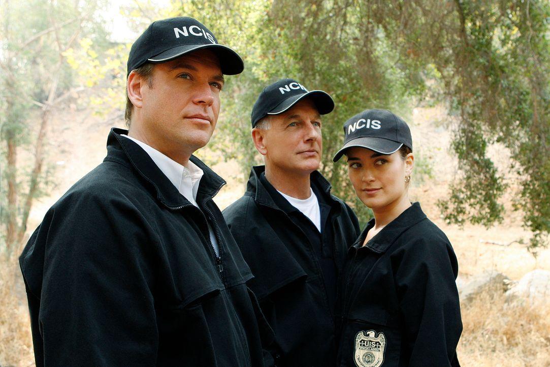 Ermitteln in einem verzwicken, neuen Fall: Gibbs (Mark Harmon, M.), Ziva (Cote de Pablo, r.) und Tony (Michael Weatherly, l.) ... - Bildquelle: CBS Television