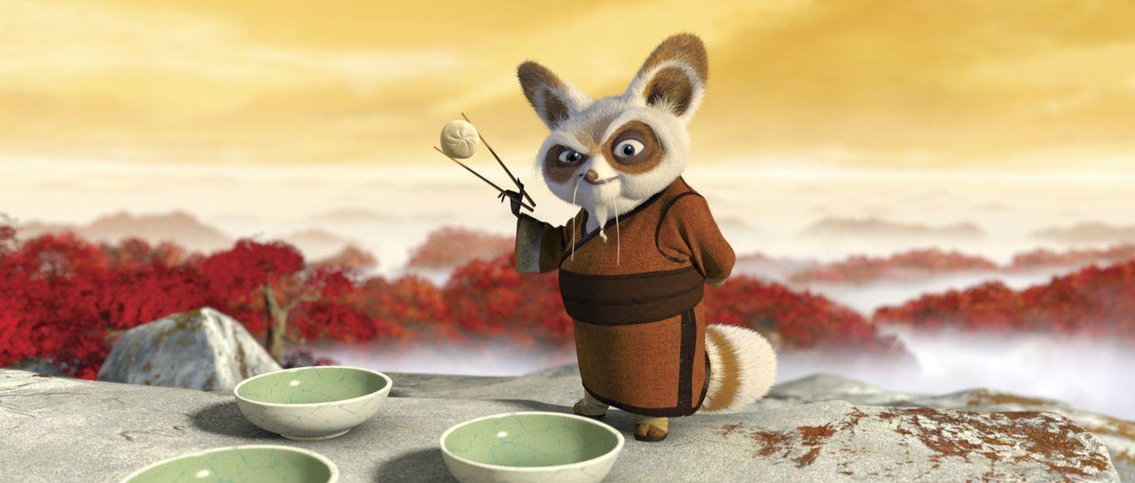 """Kung Fu Meister Shifu, der bereits die legendären """"Furiosen Fünf"""" trainiert hat, bekommt nun den Spezialauftrag. Er soll den tollpatschigen und dick... - Bildquelle: Paramount Pictures"""