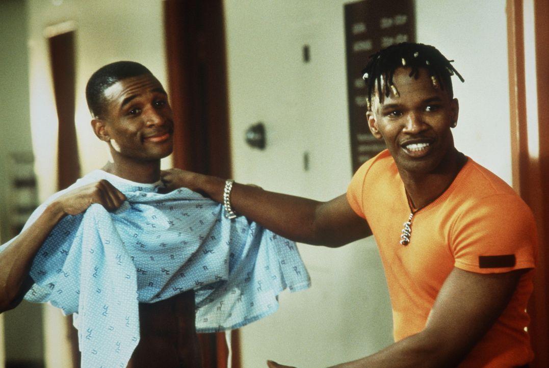 Bunz (Jamie Foxx, r.) und Rushon (Tommy Davidson, l.) sind überzeugt, dass es ihnen gelingt, Nikki und Lysterine vernaschen zu können. Doch das is... - Bildquelle: 1997 Columbia Pictures Industries, Inc. All Rights Reserved.