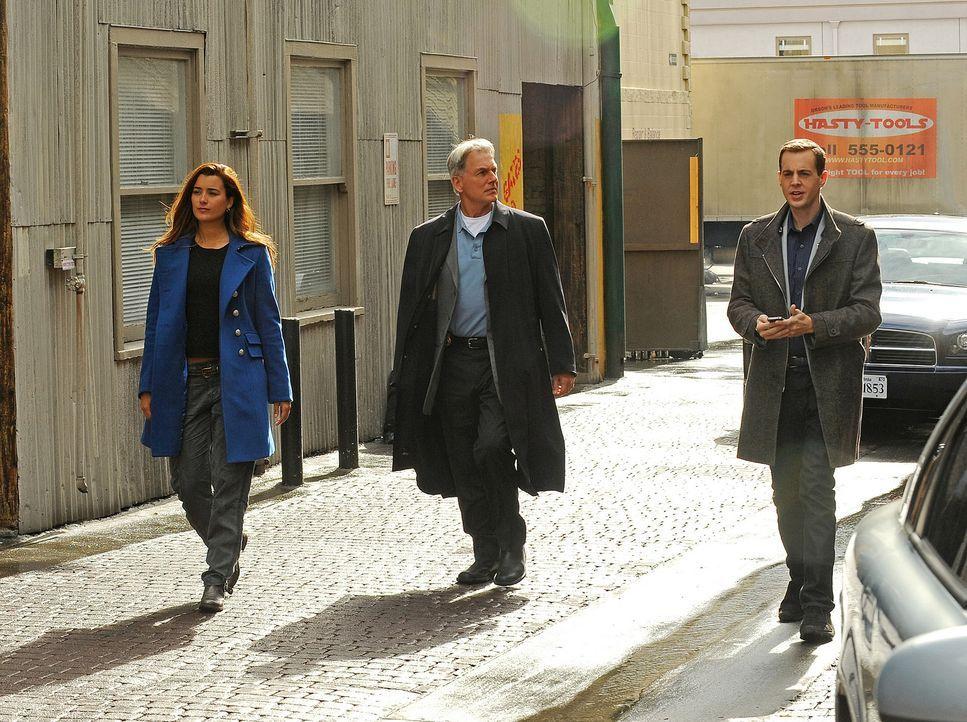 Ein neuer Fall wartet auf Ziva (Cote de Pablo, l.), Gibbs (Mark Harmon, M.) und McGee (Sean Murray, r.) ... - Bildquelle: CBS Television