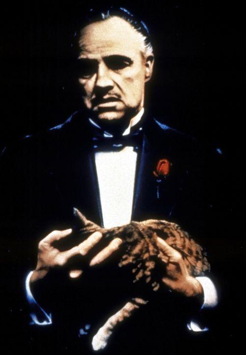 Don Vito Corleone (Marlon Brando) ist der mächtigste und angesehenste Mafiaboss von New York ... - Bildquelle: Paramount Pictures